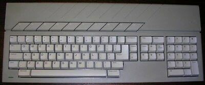 dc889f8b-1cfe-4b25-806f-88dd265e57c0.jpg